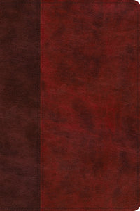 ESV Story of Redemption Bible: A Journey through the Unfolding Promises of God (TruTone, Burgundy/Red, Timeless Design )