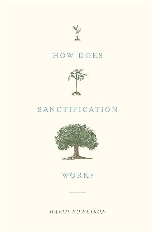 9781433556104-How Does Sanctification Work-Powlison, David