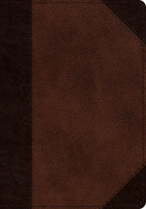 ESV Journaling Psalter TruTone, Brown/Walnut, Portfolio Design by Bible (9781433557606) Reformers Bookshop