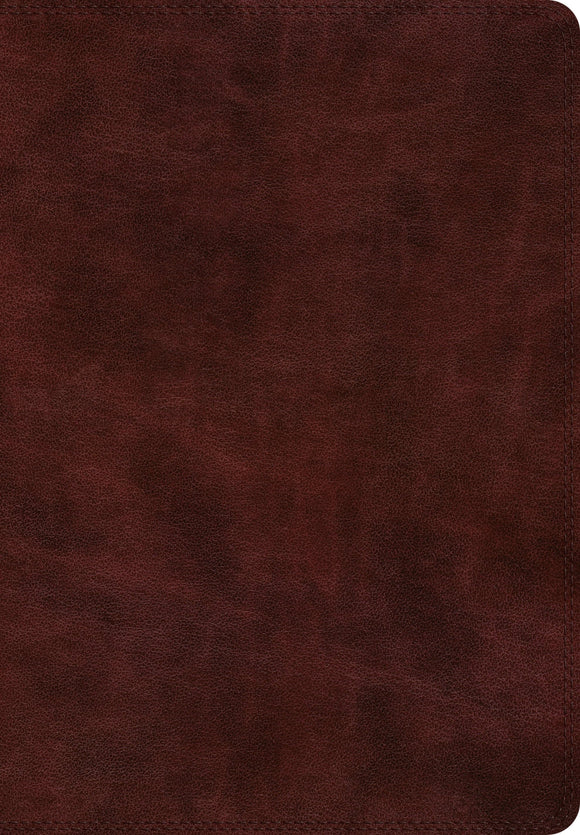 ESV Super Giant Print Bible [Burgundy]