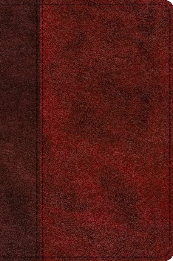 ESV Journaling New Testament, Inductive Edition | Burgundy Trutone