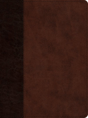 ESV Proverbs: Daily Wisdom: Trutone Brown by Bible (9781433562143) Reformers Bookshop