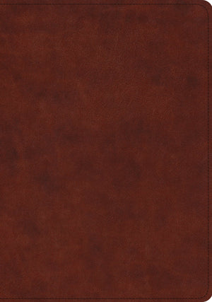 ESV Study Bible (TruTone, Chestnut) by ESV (9781433563553) Reformers Bookshop