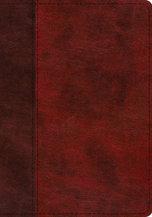 ESV Study Bible (TruTone, Burgundy/Red, Timeless Design) by ESV (9781433563560) Reformers Bookshop
