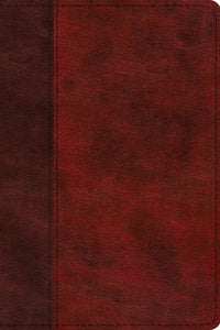 ESV Study Bible, Personal Size (TruTone, Burgundy/Red, Timeless Design)
