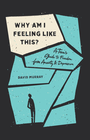 Why Am I Feeling Like This?: A Teen's Guide to Freedom from Anxiety and Depression by Murray, David (9781433567186) Reformers Bookshop
