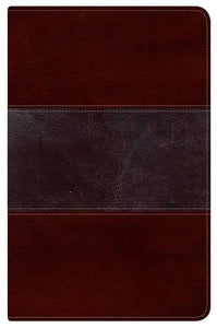 9781433602955-HCSB Ultrathin Reference Bible - Mahogany-