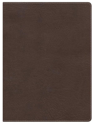 9781433603273-HCSB Study Bible - Mantova Brown-