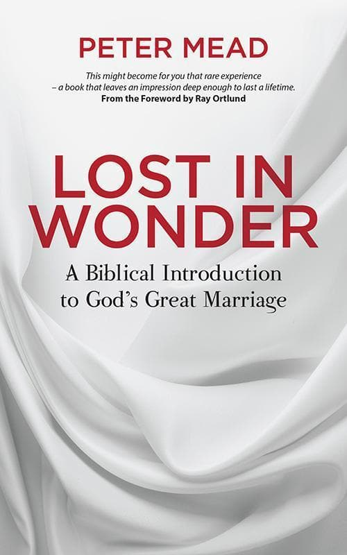 9781781919071-Lost in Wonder: A Biblical Introduction to God's Great Marriage-Mead, Peter