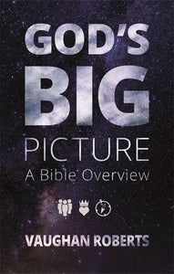 God's Big Picture DVD: A Bible Overview