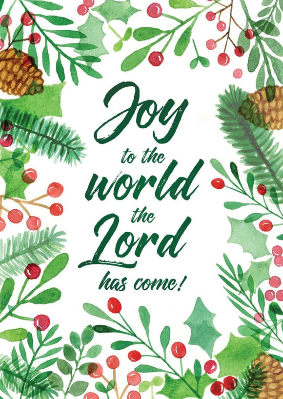 Joy to the World, the Lord has Come (6Joy)