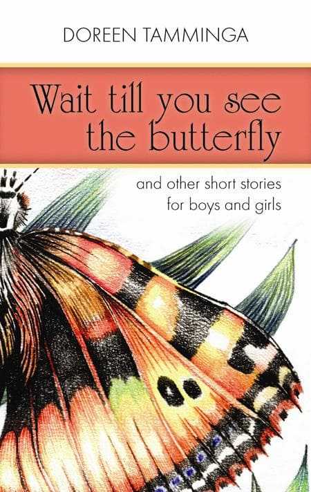 9781848711013-Wait Till You See the Butterfly: And Other Short Stories for Boys and Girls-Tamminga, Doreen