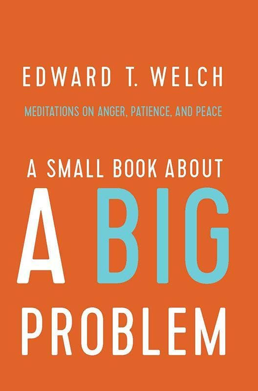 9781945270130-Small Book About a Big Problem, A: Meditations on Anger, Patience, and Peace-Welch, Edward