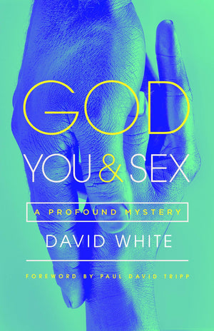 God, You and Sex: A Profound Mystery by White, David (9781948130752) Reformers Bookshop