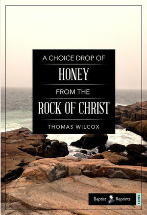 A Choice Drop of Honey from the Rock of Christ by Wilcox, Thomas (9781952599026) Reformers Bookshop