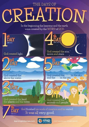 bd05-Days of Creation A3 Poster-Davis, Ben R