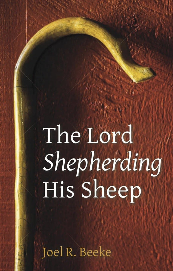 The Lord Shepherding Sheep