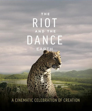 The Riot and the Dance Blu-ray by Wilson, N. D. (Director) (DVD-I137) Reformers Bookshop