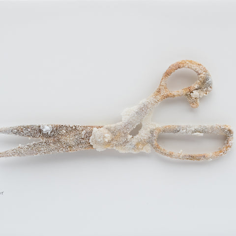 Sweetness of the Work - Scissors No1 - Lustre.art