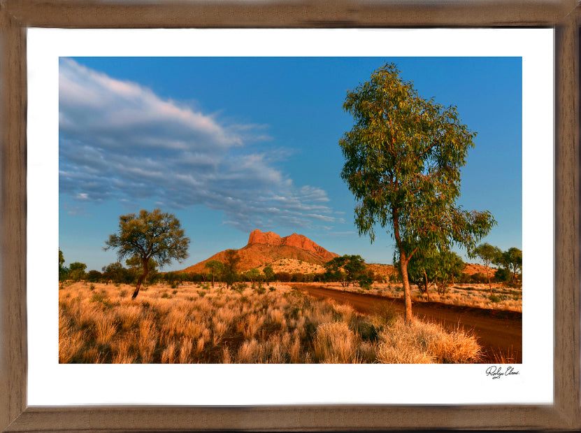 Haasts Bluff Blue - Landscapes