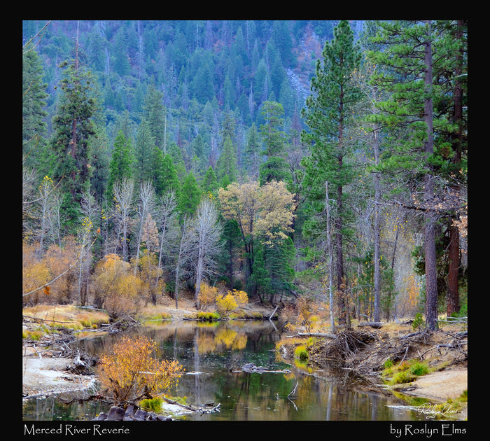 Merced River Reverie -  500 Piece Jigsaw Puzzle