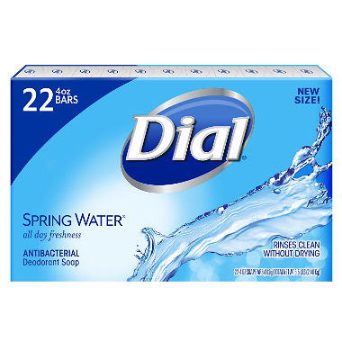 Dial Antibacterial Deodorant Soap, Spring Water (4.0 oz., 22 ct.)
