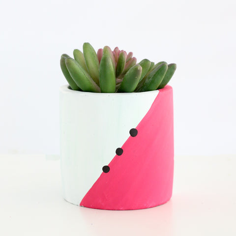 80's Style Cement Planter - Modern Geometric Colorblock