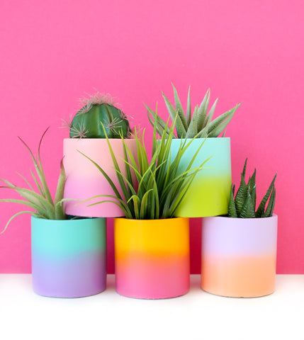 Small Two Tone Gradient Cement Planter