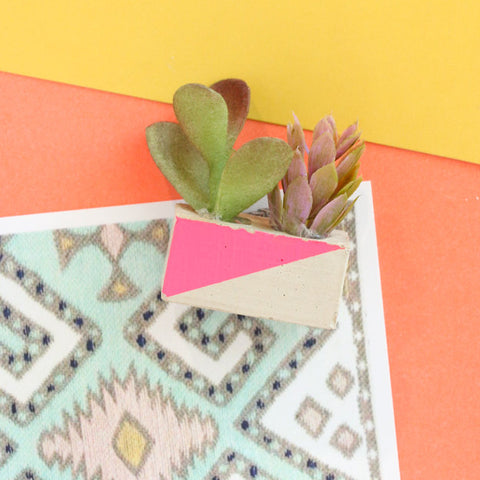 Mini Cinder Block Succulent Magnet Set