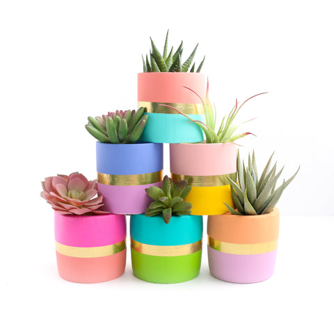 Small Color Blocked Cement Planter