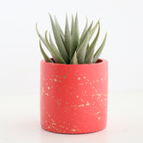 Gold Splatter Cement Planter