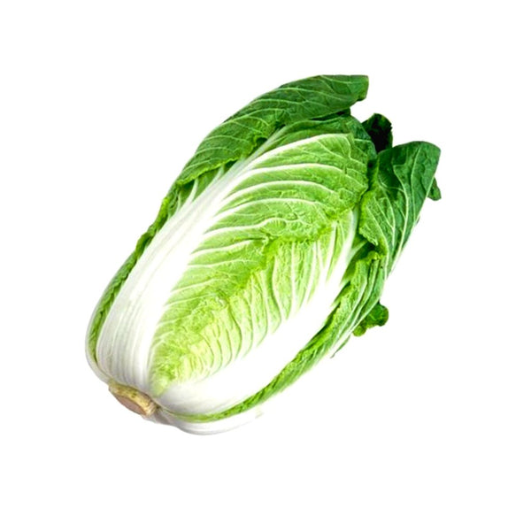 Chinese Cabbage (Wombok)