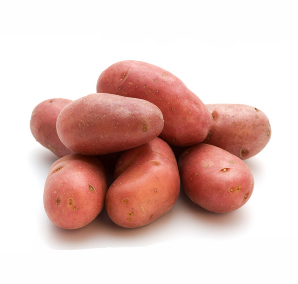 Potato - Red