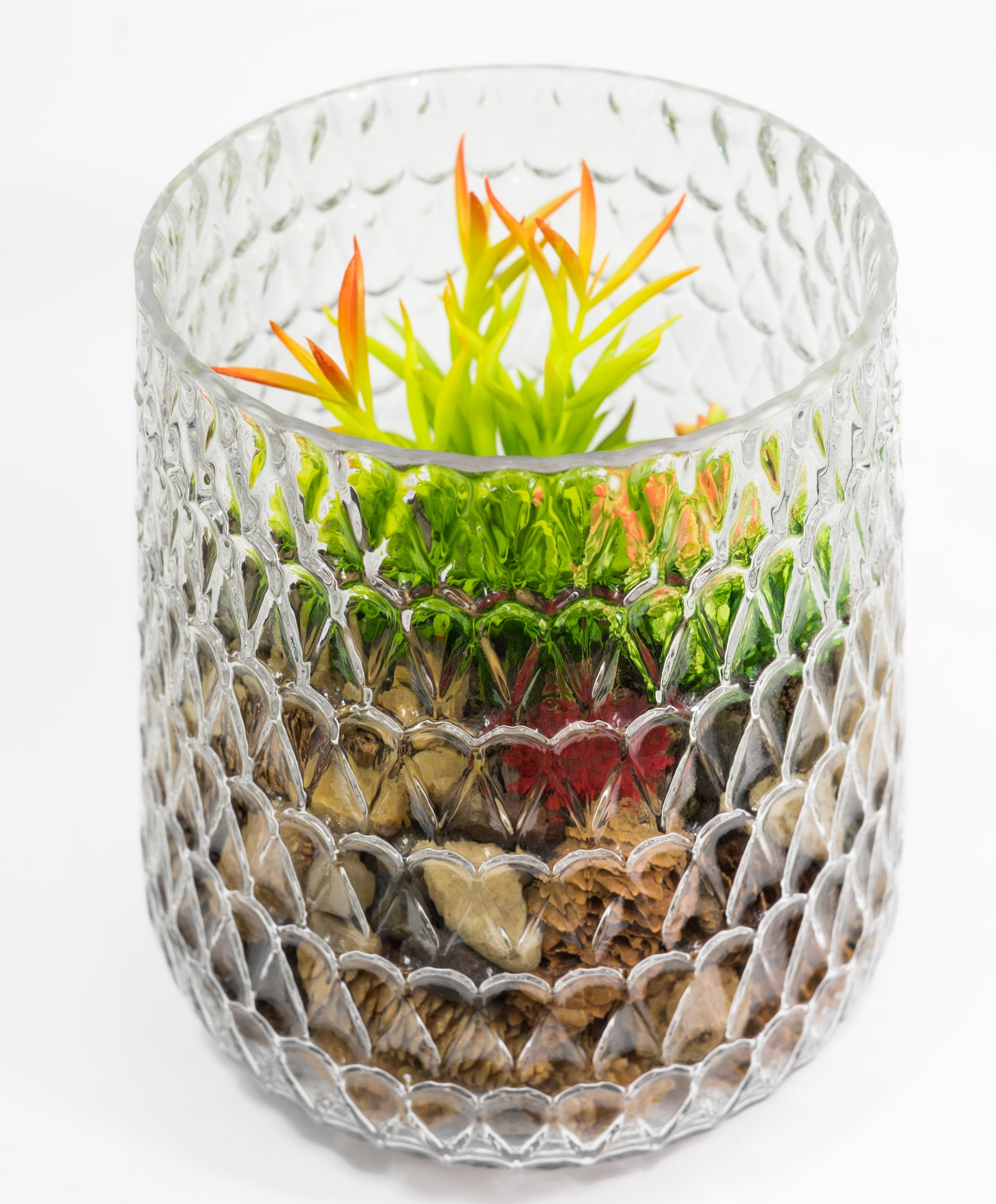dazzling Crystal Glass Vase with multiple uses such as terrarium