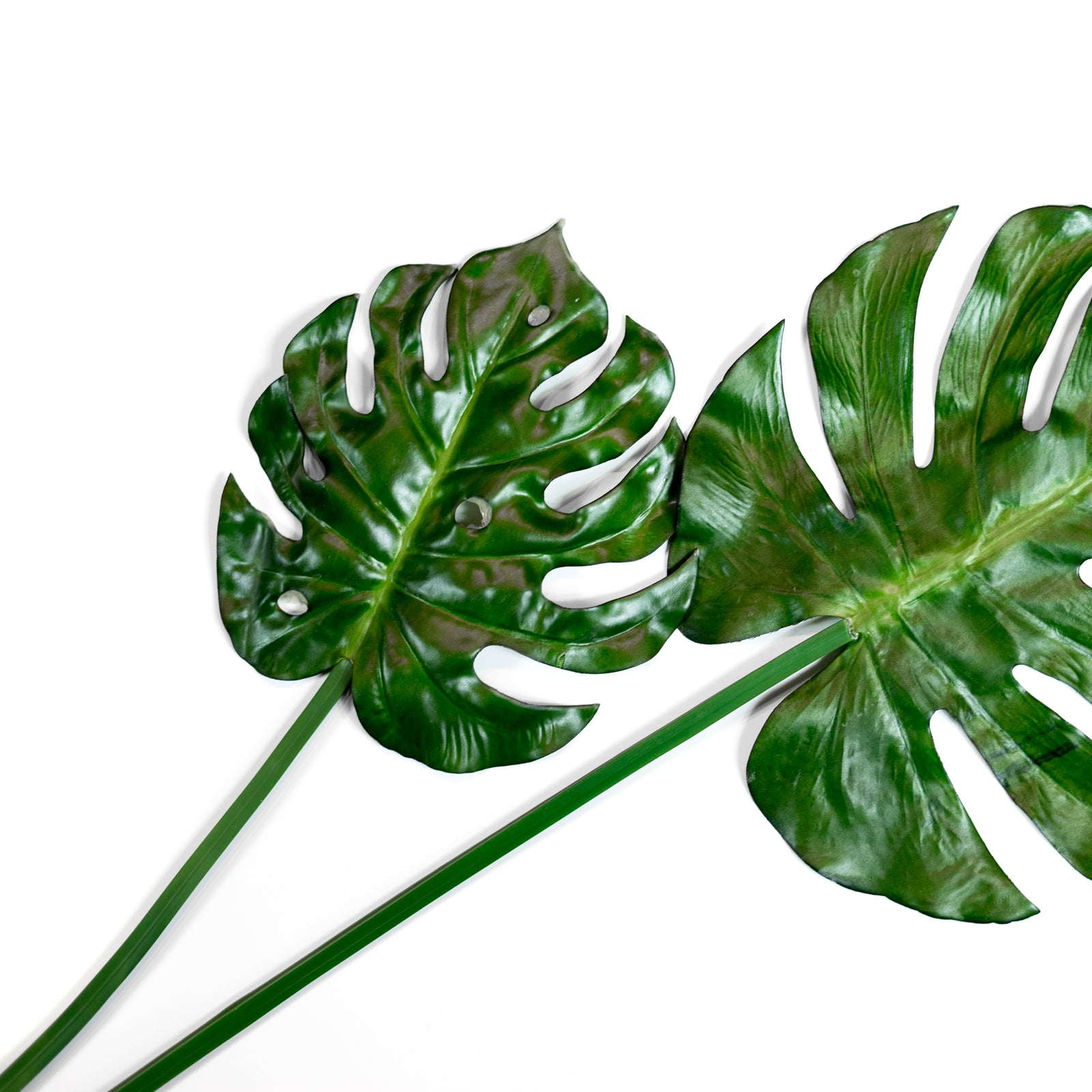 Artificial Monstera Leaf for a forever stunning fresh look
