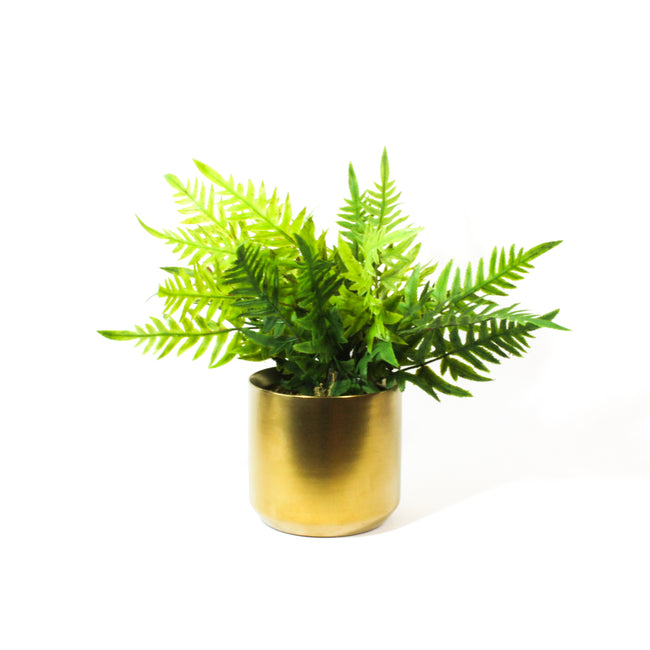 Potted Artificial Ferns, artificial plants