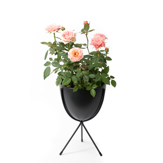 Noir Oval Stand Planter
