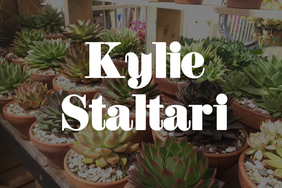 Five Minutes With Kylie Staltari