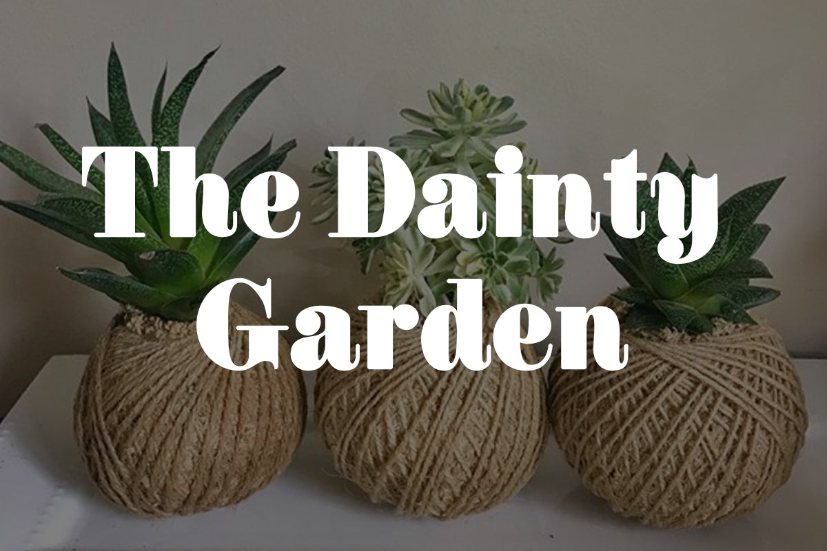 Five Minutes with The Dainty Garden