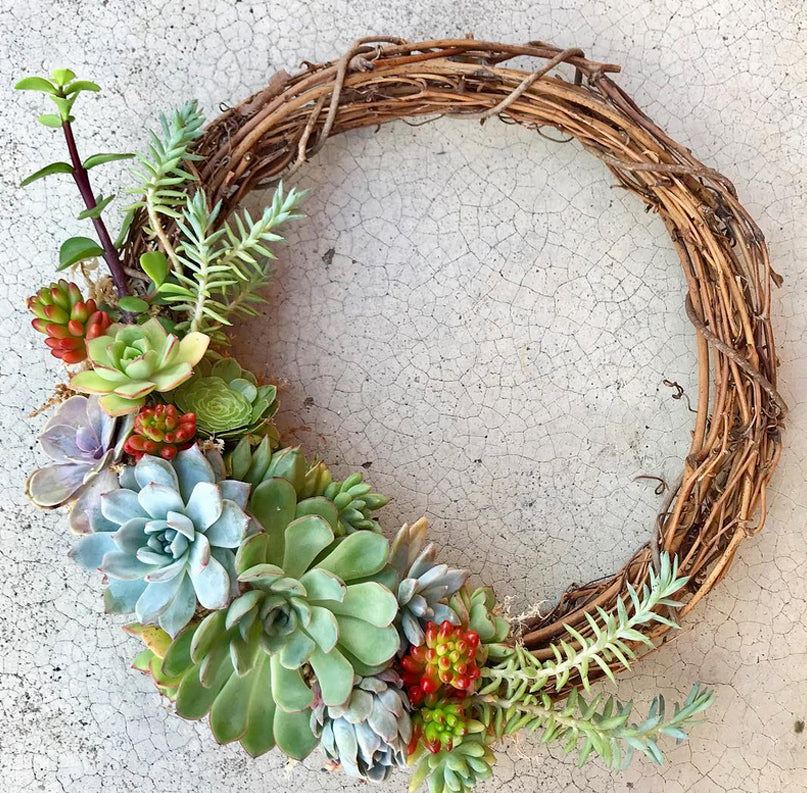 The Dainty Garden Succulent Wreath Design