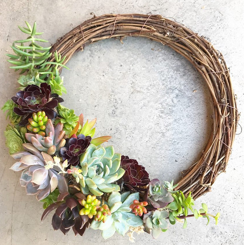 The Dainty Garden Succulent Wreath