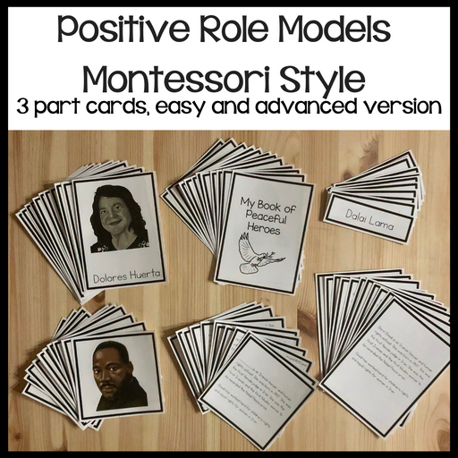 Postive Role Models 3 + 5 Part Cards and booklet - montessorikiwi