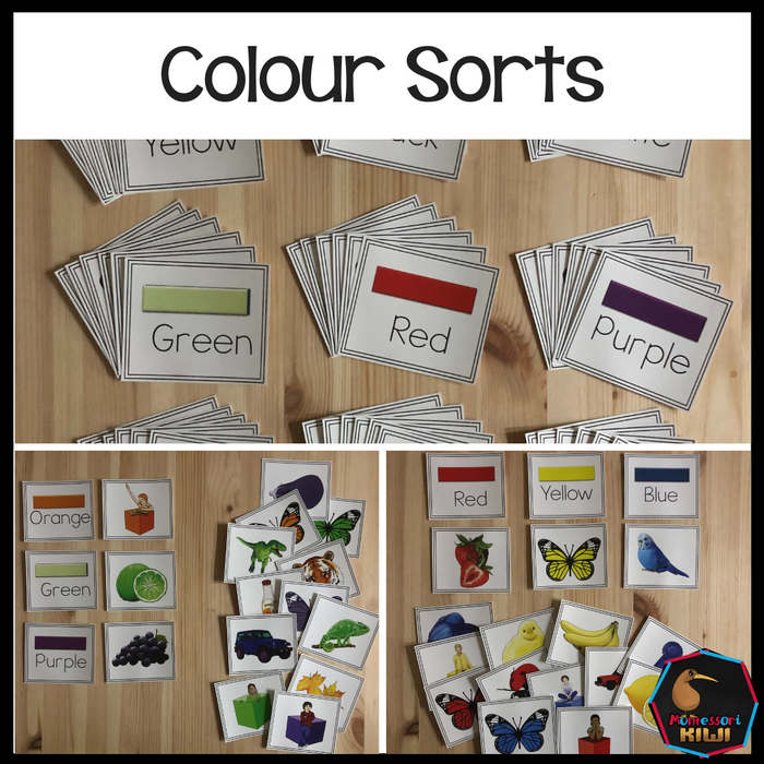 Color Sorts - montessorikiwi