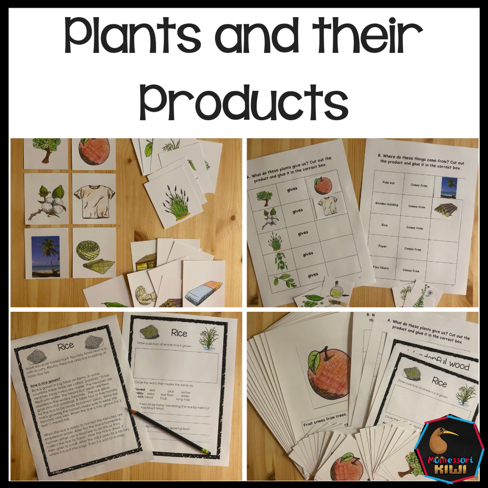 Plants and their products - montessorikiwi