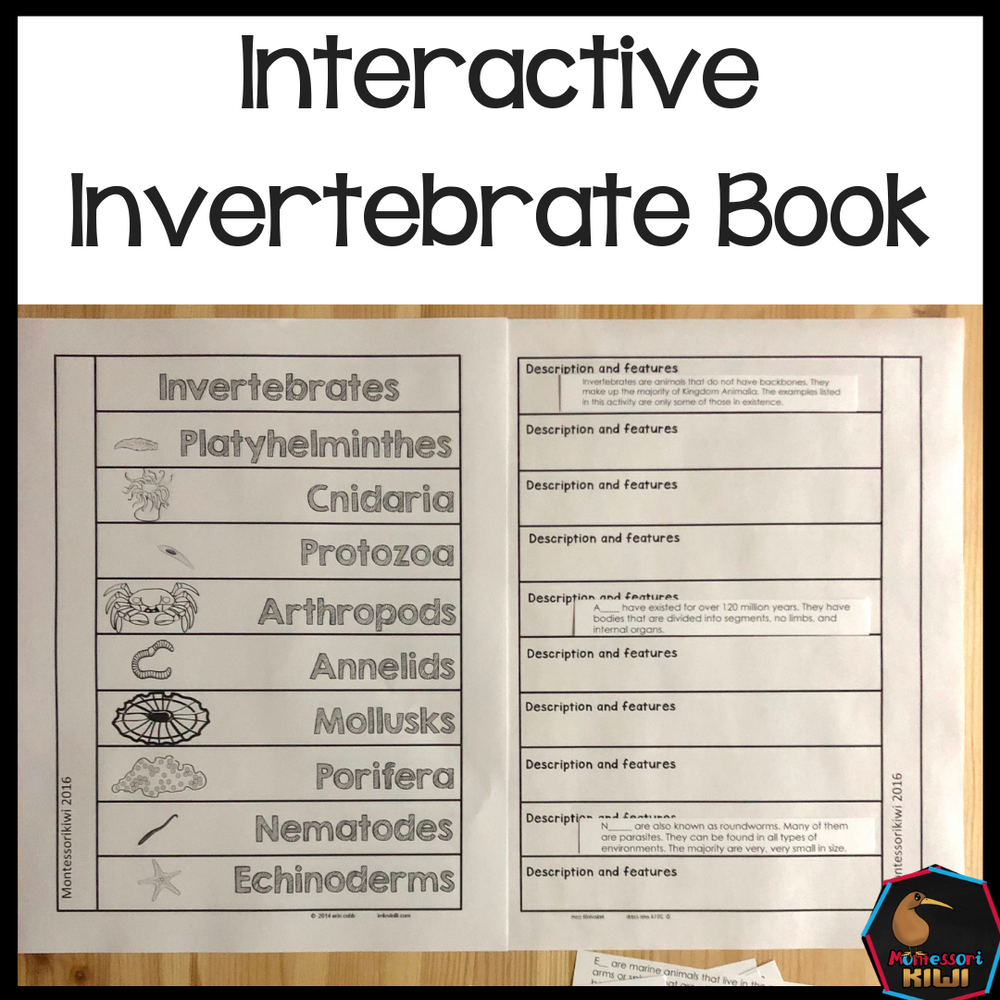 Invertebrate Book - montessorikiwi