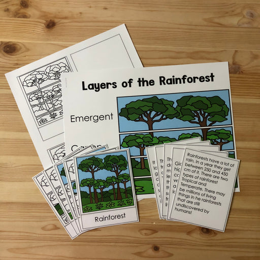 Rainforest Layers 3 Part Cards - montessorikiwi
