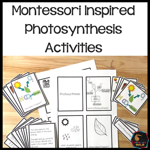 Photosynthesis Montessori Inspired activity - montessorikiwi