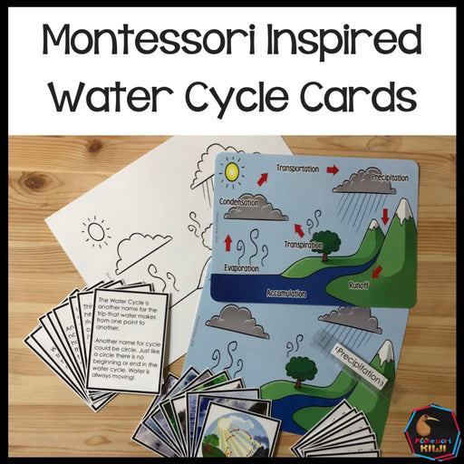 Water Cycle 4 Part Cards - montessorikiwi