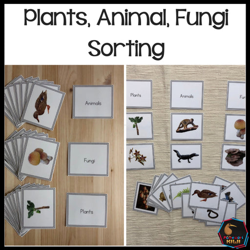 Plants, Animal, Fungi Sorting - montessorikiwi