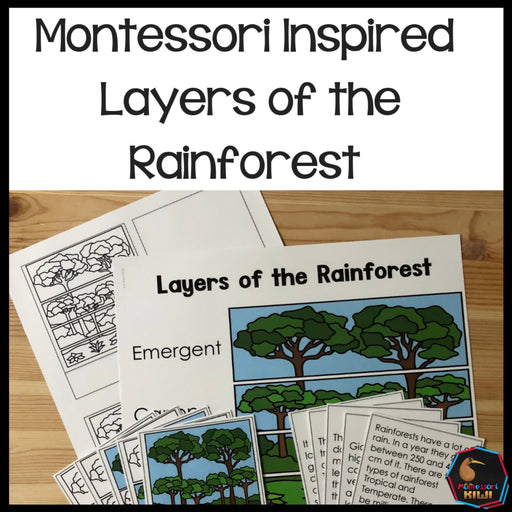 Rainforest Layers 4 Part Cards - montessorikiwi